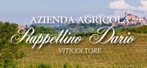 Azienda agricola Rappellino Dario: visita in cantina e degustazione