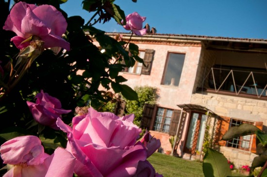 Roses on Cascina rosa b&b, bed and breakfast in Monferrato