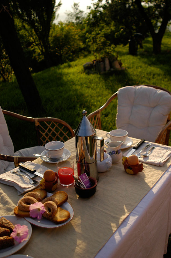 Breakfast in the garden - Cascina rosa b&b in Monferrato
