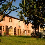 Cascina rosa b&b, bed and breakfast in Monferrato