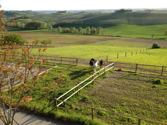 A cavallo in Monferrato - Cascina rosa b&b