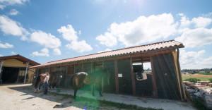 Lezioni di equitazione e passeggiate a cavallo in Monferrato - Maneggio Montarsone - Cascina rosa b&b